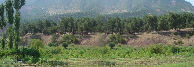 بلدة زاويته في محافظة دهوك