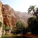 محافظة الشرقية العمانية