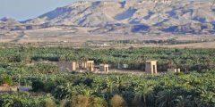 أكبر محافظة في مصر الوادي الجديد