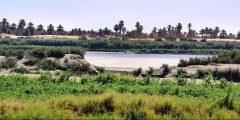 محليه القولد في السودان