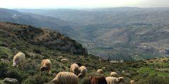 منطقة حسبان في محافظة عمان