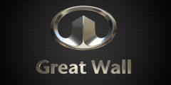 معلومات عن شركة جريت وول