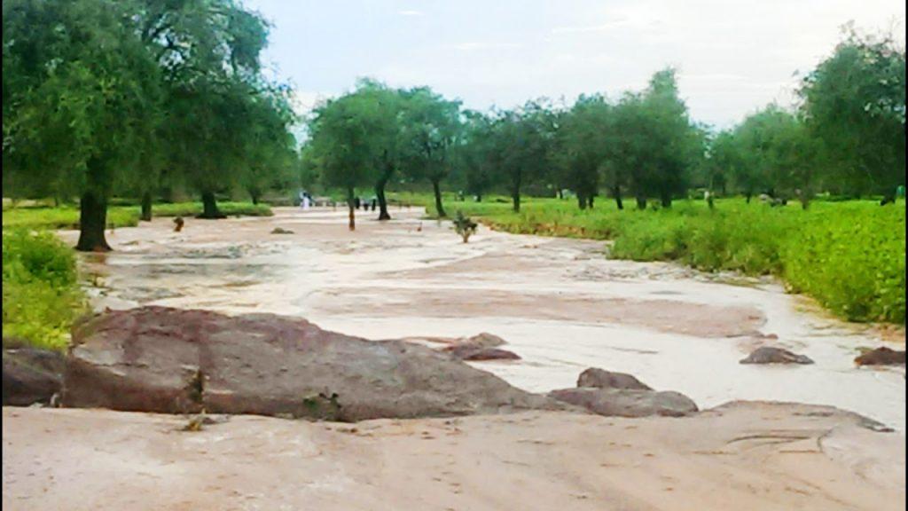 مدينة كلبس في السودان