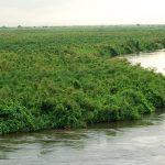 ولاية جنوب كردفان في السودان