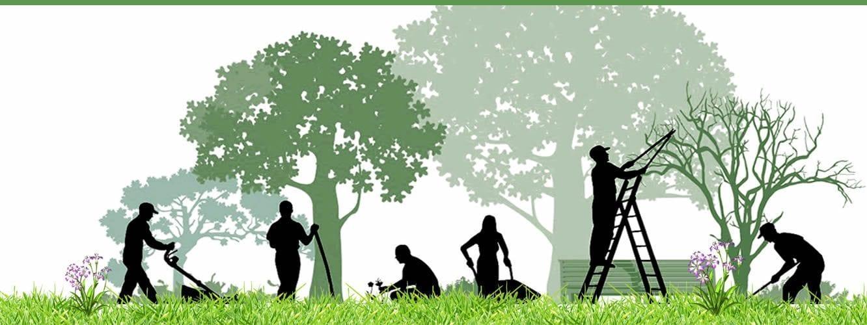 خدمات الحدائق