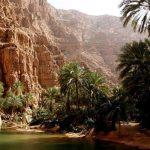 ولايات محافظة جنوب الشرقية في عمان
