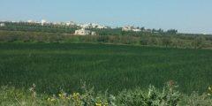 منطقة خرجا في محافظة إربد