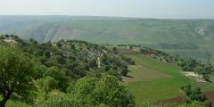 منطقة سحم في محافظة إربد