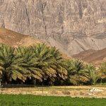 تقسيم ولاية عبري في سلطنة عمان