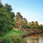 محلية الدبة في السودان
