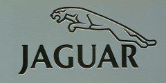 شركة Jaguar