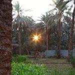 تقسيم ولاية سمائل في سلطنة عمان