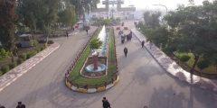 جامعة بابل