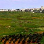 مدينة الصنمين السورية