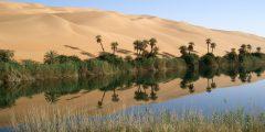 مدينة وادي الحياة في ليبيا