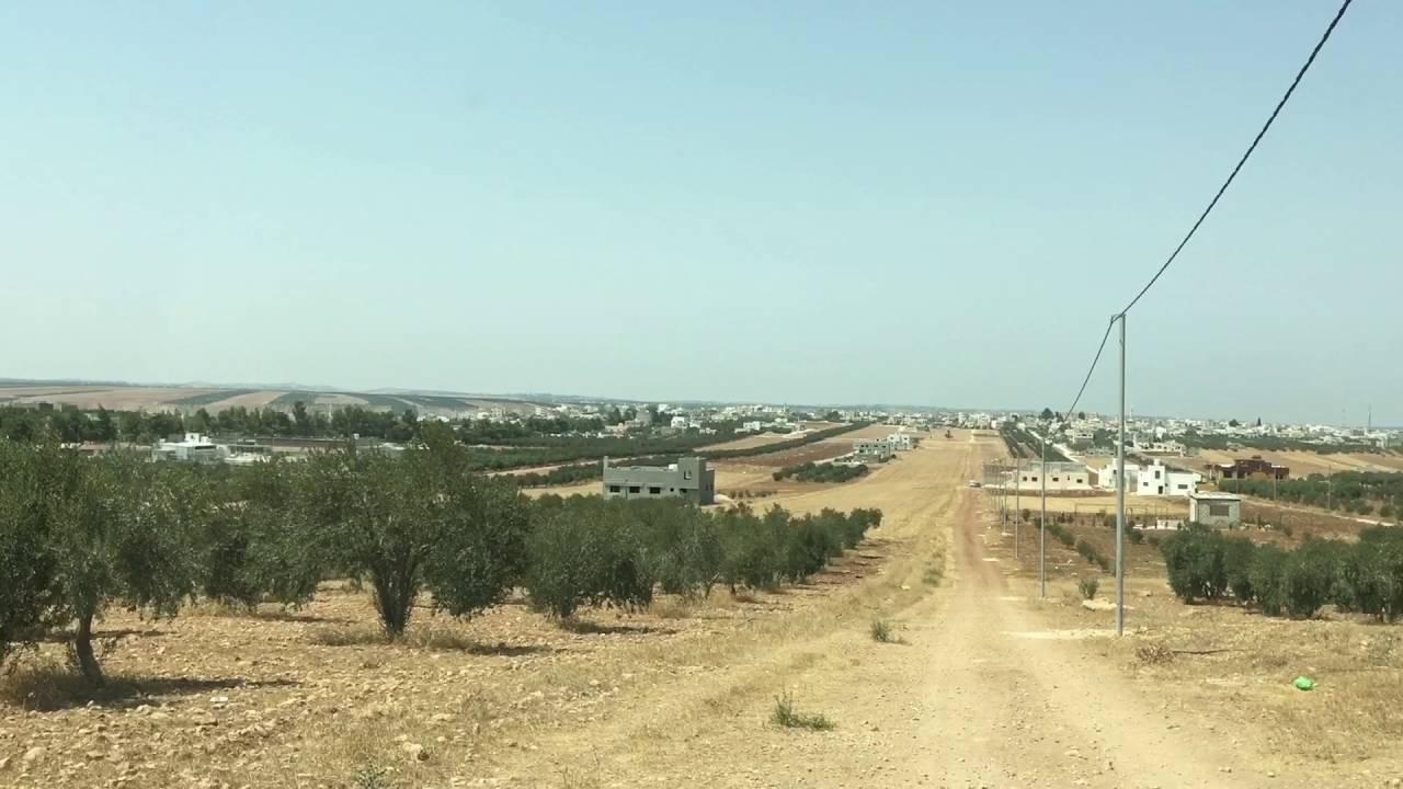 منطقة الشجرة في محافظة إربد