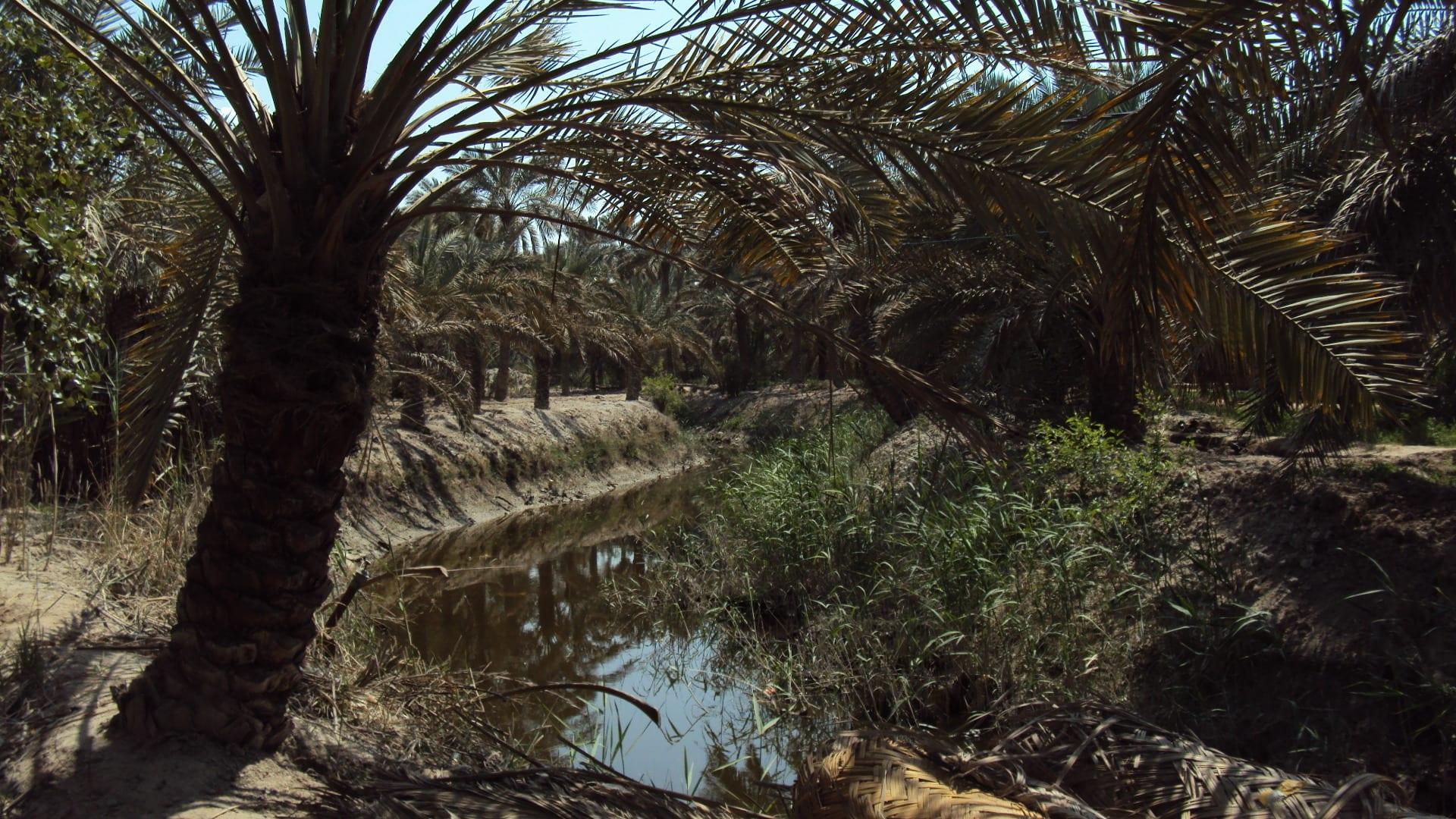 مدينة أبو الخصيب في محافظة البصرة