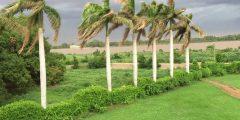 ولاية الجزيرة في السودان