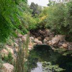 مجمع سيلك ليف في منطقة البراري