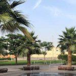 مجمع المنطقة 16 في مدينة محمد بن زايد