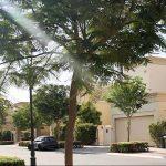 مجمع المهرة في منطقة المرابع العربية