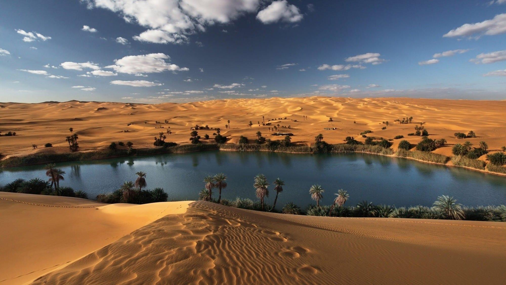 جزيرة العرب في القرن العشرين