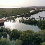 جزيرة بن غنام