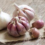 زراعة البصل والثوم