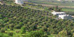 منطقة المطلع في محافظة إربد