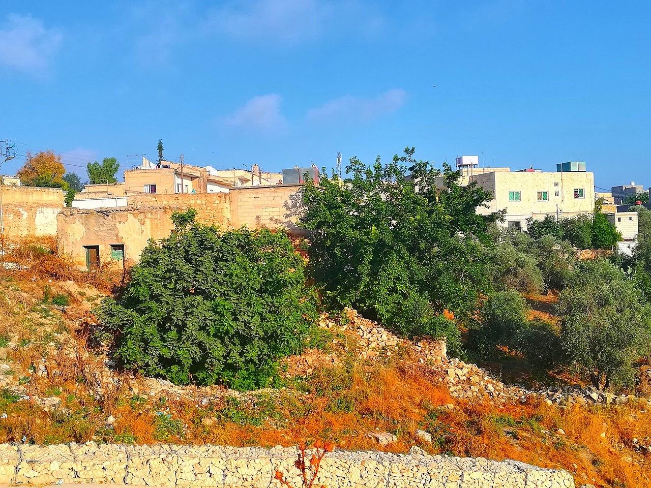 منطقة النزهة في محافظة إربد