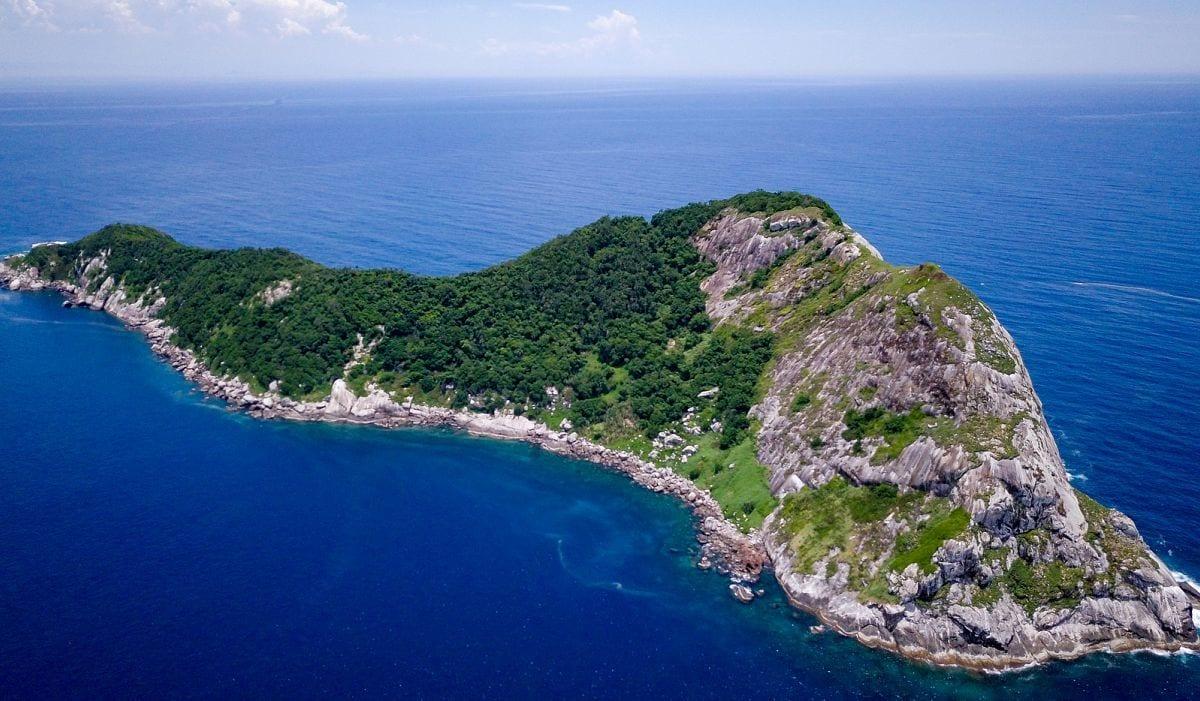 جزيرة الثعابين أخطر جزيرة في العالم