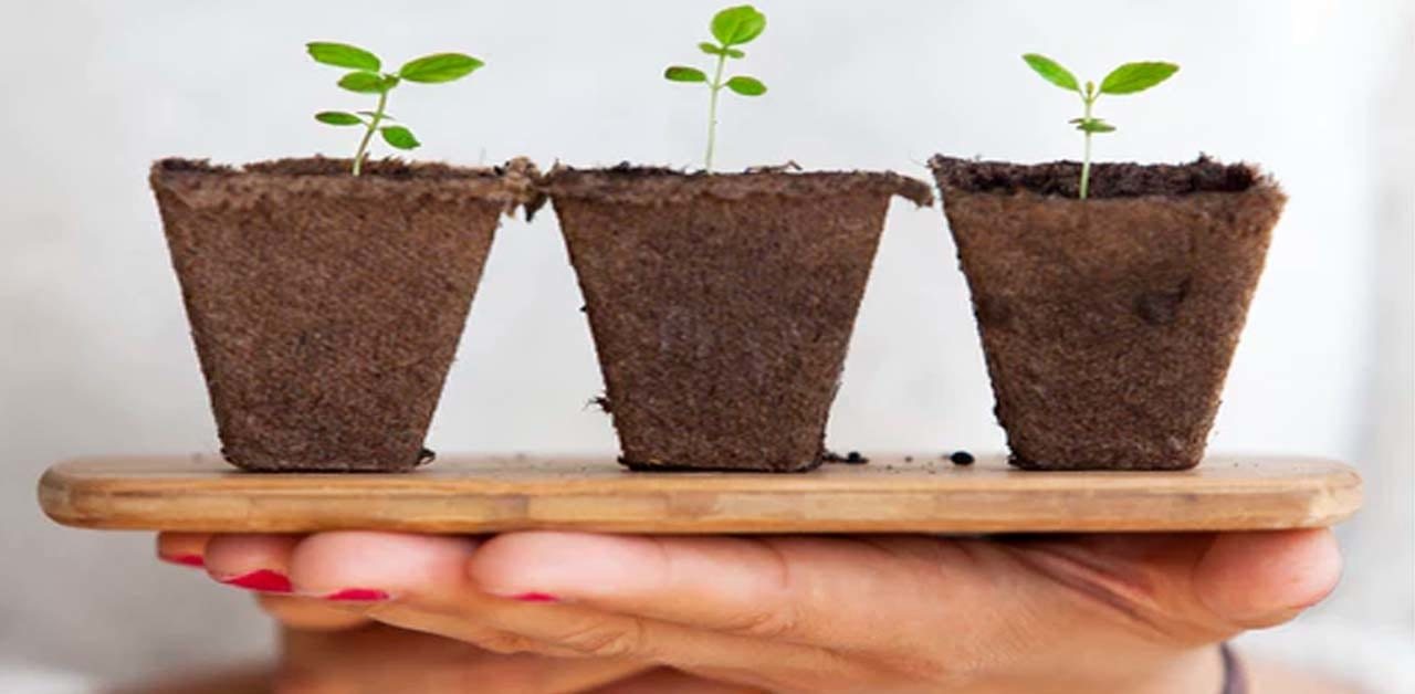 تعريف غسل التربة : اقرأ - السوق المفتوح
