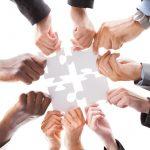 أهمية التعاون بين أفراد فريق العمل
