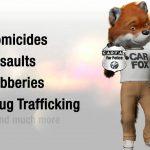 ما هو تقرير CarFax