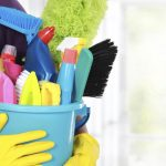 تنظيف المنزل ليكون خالٍ من الحشرات