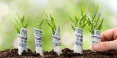 خمسة أسباب لبدء مشروعك في الأسواق الناشئة