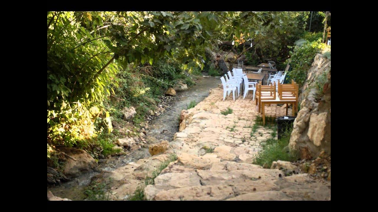 منتزه وادي الشتا